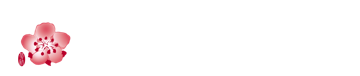 中華航空 China Airlines Logo